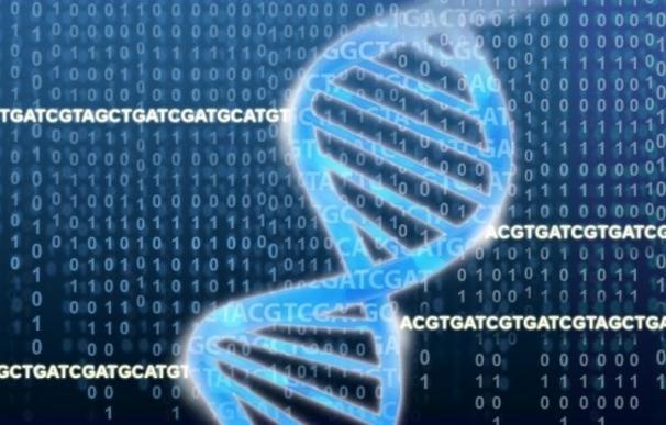Investigadores identifican genes en las células cancerosas esenciales para que la inmunoterapia funcione