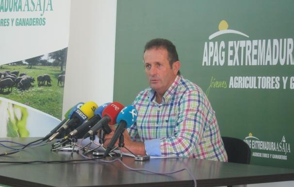 APAG Extremadura Asaja reclama a la Junta ayudas de mínimis para el cereal y que autorice la quema de rastrojos