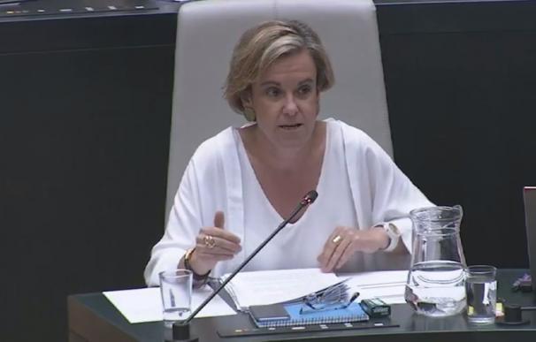 """PSOE no cuenta con datos """"tan optimistas"""" como los de Sánchez Mato, a quien pide """"ejecutar el presupuesto al 100%"""""""