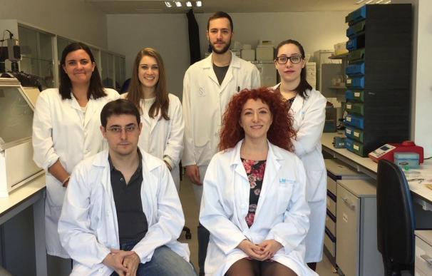 El Instituto de Investigación Biomédica del Hospital Universitario La Paz fabricará un sustituto completo de córnea