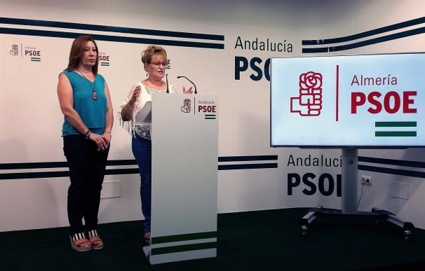 """PSOE cree que la """"actitud"""" del PP con la provincia """"no se corresponde con los votos que recogen"""""""