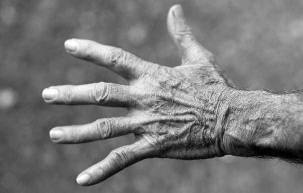 Un estudio preclínico sugiere que el Parkinson podría comenzar en las células endocrinas intestinales