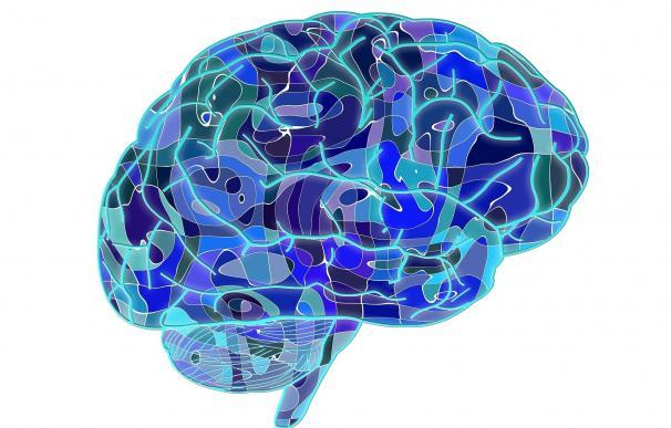 Científicos diseñan un método no invasivo para la estimulación cerebral profunda