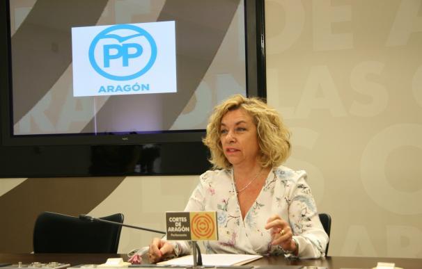 El PP pide al Gobierno de Aragón que fomente el uso de drones y lo convierta en un sector estratégico