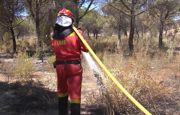 Medio Ambiente envía medios aéreos y terrestres al incendio de Gátova (Valencia)