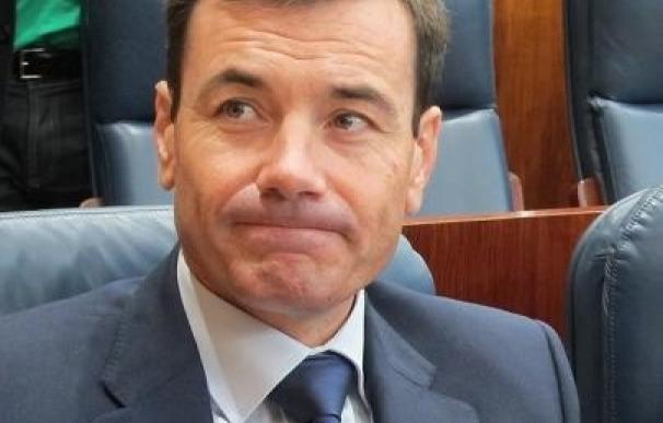 Gómez tiene constancia de que Chacón quiere liderar el PSOE
