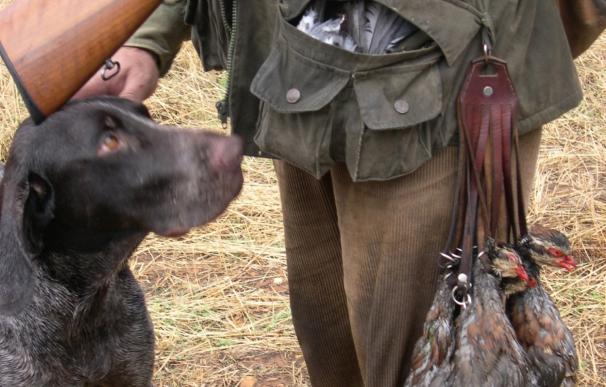 El Congreso debate el martes una ley del PP que permitirá la caza y pesca de especies invasoras