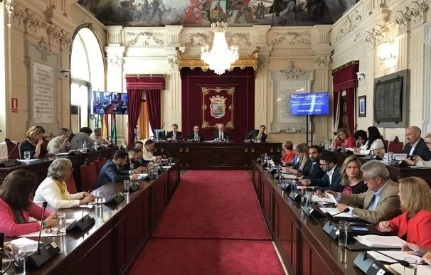 Limasa, horario del Museo de Málaga y la agilización de licencias de Urbanismo, a debate en el pleno de Málaga