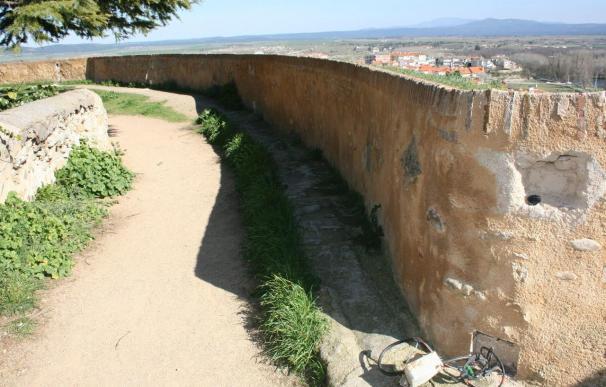 Ovejas castellanas, la solución para limpiar la muralla de Ciudad Rodrigo