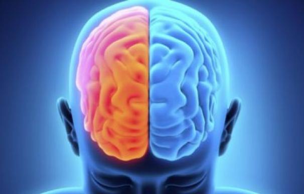 Resonancias magnéticas en el cerebro podrían predecir la salida del coma