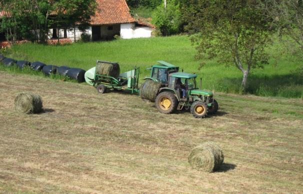 El Congreso debate mañana la reactivación de la Ley de Desarrollo Sostenible del Medio Rural