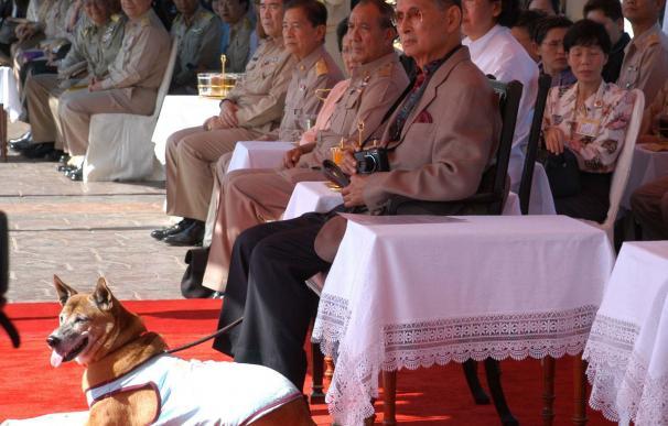 El monarca tailandés y su can.