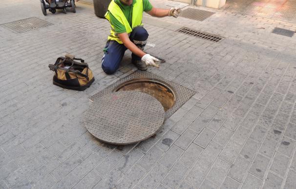 El Ayuntamiento de Málaga realiza en los últimos tres años más de 17.400 actuaciones de control de plagas