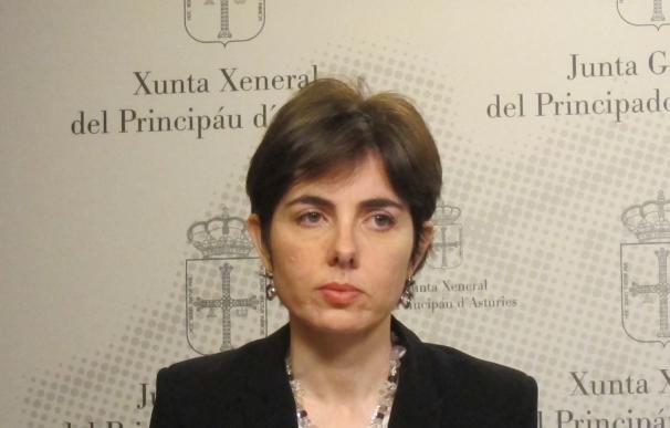 """El PP no admite lecciones de Carcedo """"cuando no ha sido incapaz de controlar el déficit"""""""