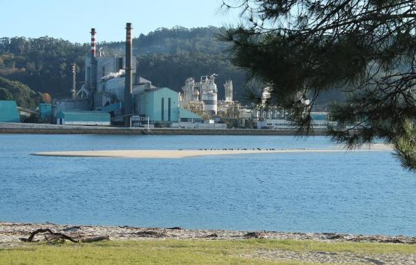 Ence propone a la Xunta un Pacto Ambiental con una inversión de hasta 176 millones de euros