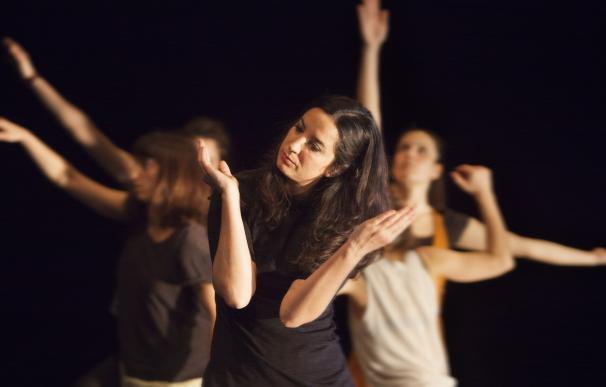Los profesionales celebran este sábado el Día de la Danza con un guiño a todas la artes en el Pumarejo