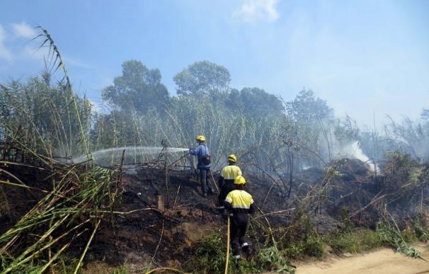 Ecologistas dice que el proyecto ley del Suelo de Madrid abre la puerta a construir en zonas quemadas