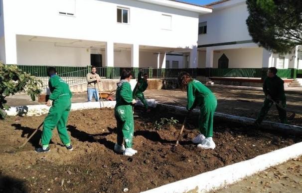 Diputación realiza este año 329 proyectos comunitarios dirigidos a una población de casi 240.000 habitantes