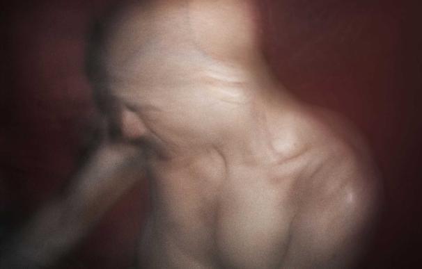 D'Agata trae sexo explícito, violencia con animales y drogas a la exposición de PHotoEspaña del Círculo de Bellas Artes