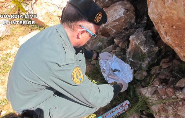 Un detenido por usar veneno camuflado en sardinas en un campo para proteger a naranjos de animales