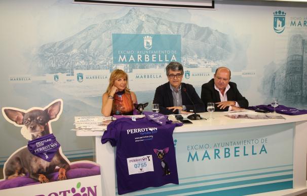 Marbella acoge la primera edición andaluza de 'Perrotón', carrera por la adopción de animales de compañía