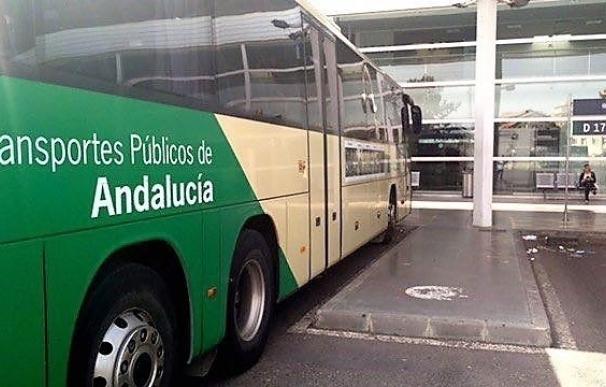 Junta licita la redacción de pliegos para renovar las líneas de autobuses de la capital, Roquetas y El Ejido