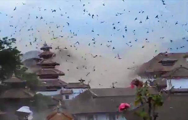 Los pájaros alzan el vuelo tras el terremoto de Nepal