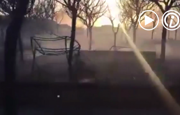 Así ha quedado el camping de Doñana tras el incendio del pasado sábado
