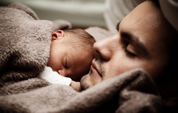 Dormir suprime la actividad de unas células nerviosas que promueven el olvido en modelos animales