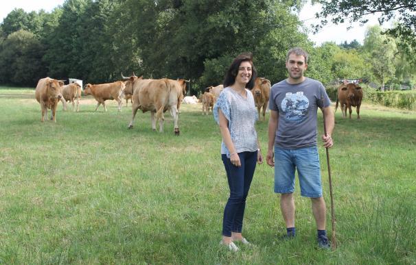 La carne de vaca y buey gallega contará con una indicación geográfica protegida para preservar las producciones