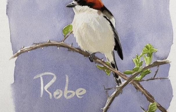 Robe Iniesta estrena el primer avance de su debut en solitario: ...Y rozar contigo