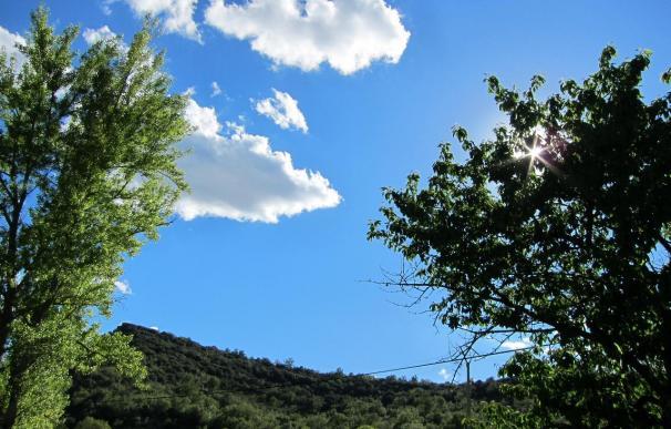Cielos soleados, intervalos de nubes y temperaturas estables para este domingo