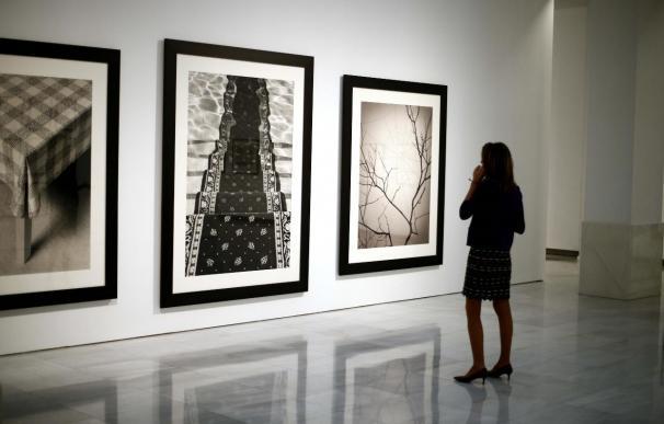 El fotógrafo Chema Madoz mira a la naturaleza en 'Las reglas del juego'