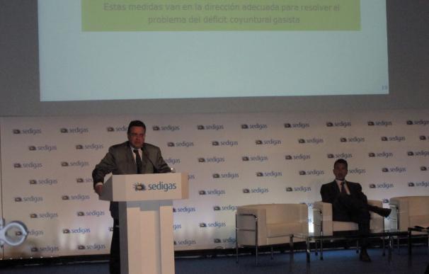 Llardén (Enagás) defiende el papel decisivo jugado por el gas en la crisis de demanda eléctrica de enero