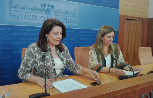 """PP-A cree que Susana Díaz buscará una """"maniobra de distracción"""" para que los andaluces olviden """"su dejadez y parálisis"""""""