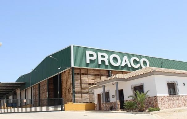 """Enchufe Solar y Proaco proyectan en Cabra la planta solar """"más grande"""" del sur europeo de autoconsumo agrícola"""