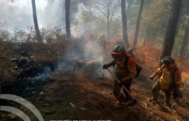 La actuación ante un incendio forestal, a prueba en Mijas y Benalmádena