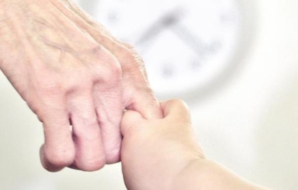 Genes son activados por el reloj biológico para ayudar a proteger contra el estrés y el envejecimiento