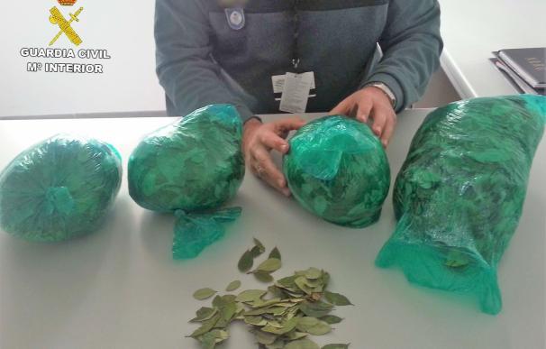 Intervenidos 1,6 kilos de hoja de coca en el aeropuerto de Almería a una pasajera llegada de Bolivia