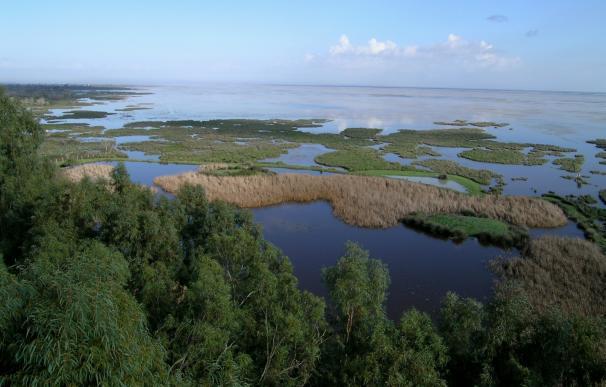 WWF registra en administraciones cartografía sobre 1.712 balsas de riego en Doñana y lamenta la inacción al respecto