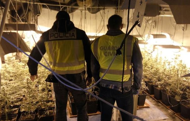 Incautan 44 kilos de marihuana al vacío a un grupo que presuntamente la enviaba por correo a Europa