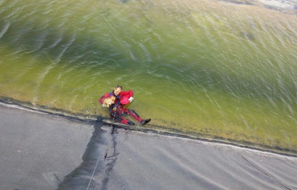 Bomberos del CEIS rescatan a un perro que había caído a una balsa de riego en Alhama