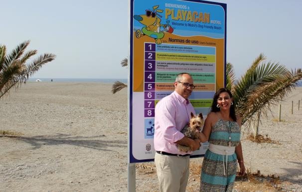 Motril cuenta este verano con la única playa para mascotas de la provincia