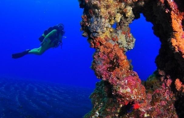 Oceana promueve que El Hierro sea el primer Parque Nacional marino de España