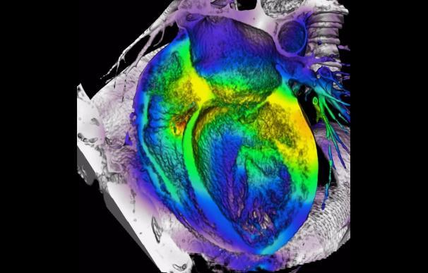 Investigadores avanzan hacia un parche biónico para monitorizar y responder a problemas cardiacos