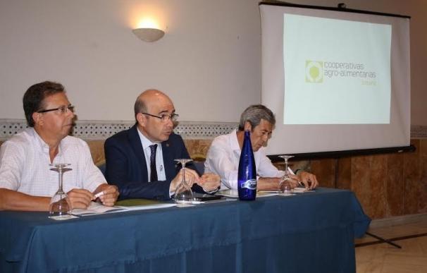 Junta informa a cooperativas agroalimentarias del Plan de Inspecciones de Instalaciones Indutriales