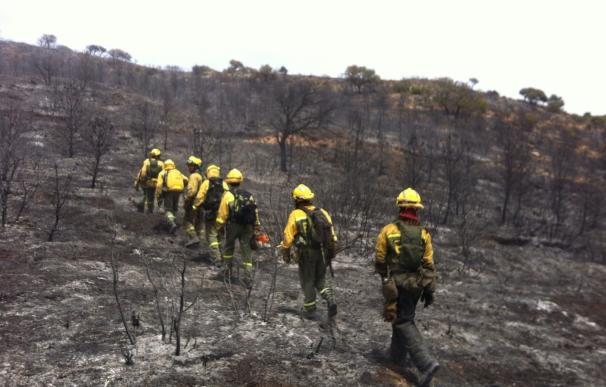 C-LM da por controlado el fuego de Belmontejo (Cuenca) que afecta a 200 hectáreas de superficie agrícola