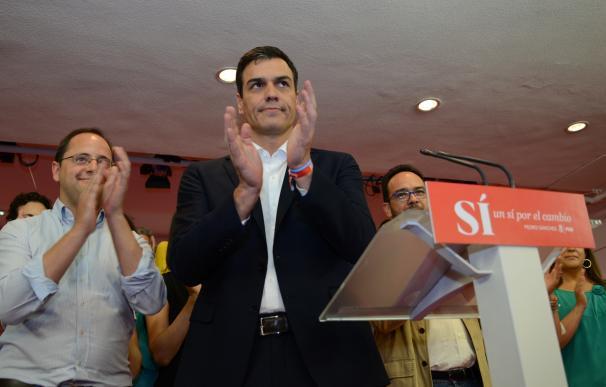 Exdirigentes de IU y PSOE pide un Gobierno de Pedro Sánchez en minoría apoyado por Podemos y Ciudadanos