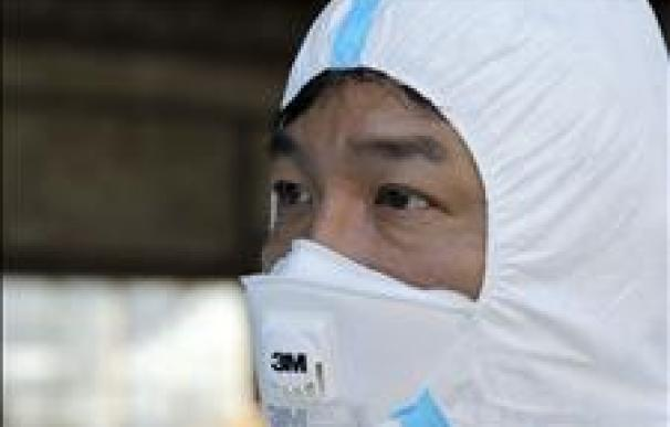 Prohíben la carne vacuna de una tercera provincia de Japón por radiactividad