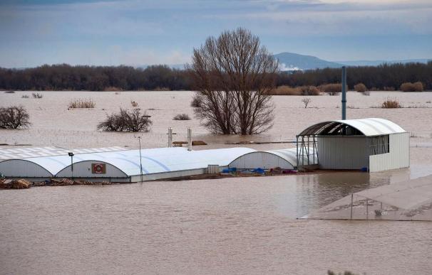 La bajada del nivel del Ebro en zonas inundadas será lento y seguirá en niveles parecidos durante 24 horas